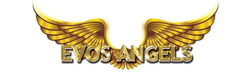 Evos Angels