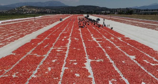 İzmir ovaları kırmızıya büründü