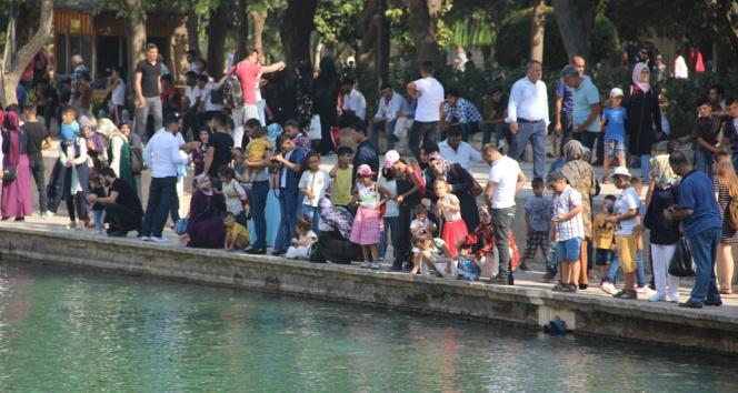 Şanlıurfa turizminde tarihi rekor kırıldı