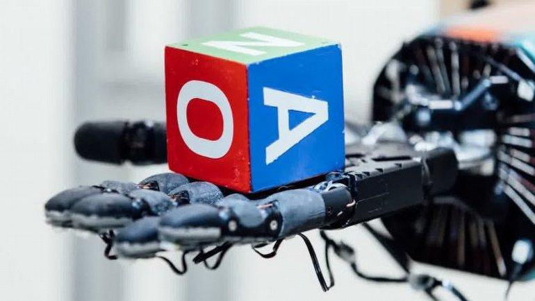Tutmayı kendi öğrenen robot el!