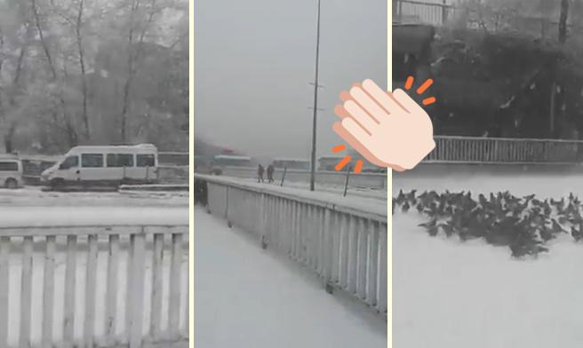 Zonguldak Belediyesi'nden Dünyayı Güzelleştiren Anons: 'Yoğun Kar Yağışı Nedeniyle Sokak Hayvanları İçin Uygun Yerlere Yemek Konulması Rica Olunur'