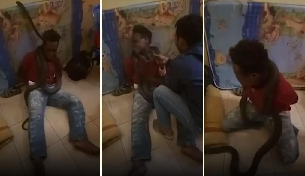 Hırsızlıkla Suçlanan Adamı Yılanla Korkutarak Sorgulayan Polis