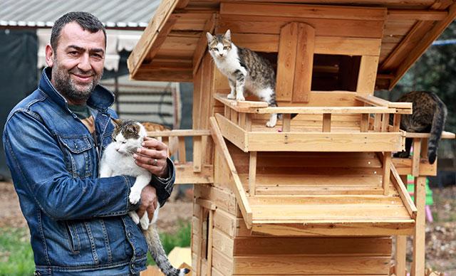 'Kedi Köyü' Kurup Para Toplamıştı: ASKODER Başkanı'na 'Ömür Boyu Hayvan Bulundurmama' Cezası