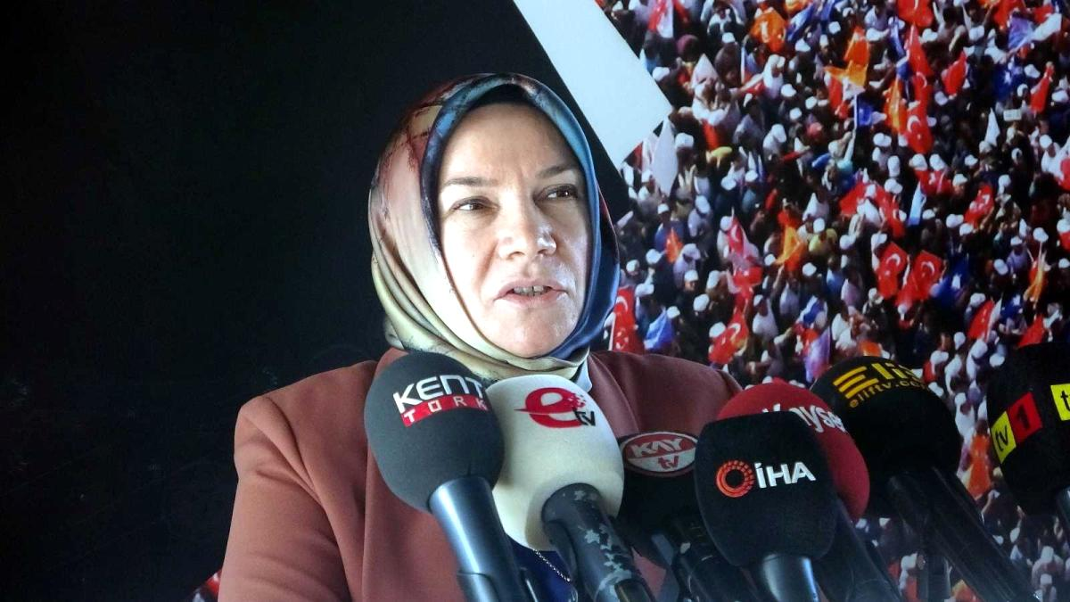 AK Parti Kayseri Milletvekili Nergis: