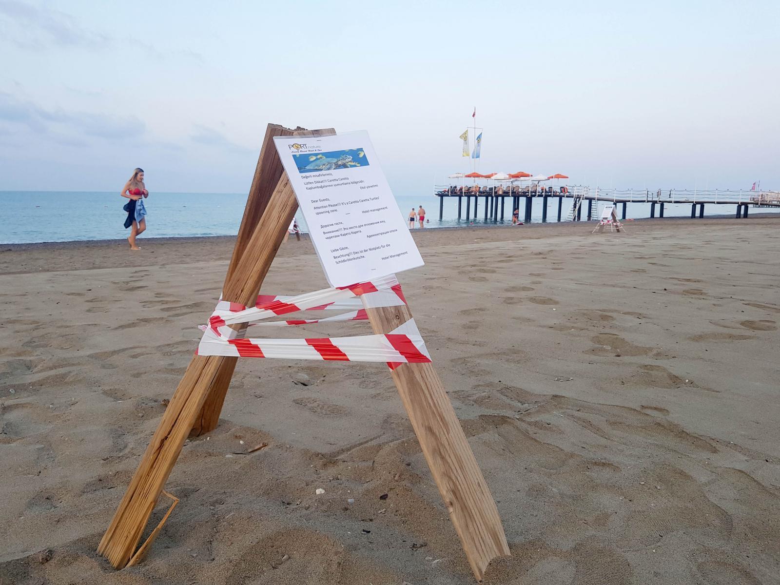 Antalya'da Onlarca Carettanın Ölümüne Neden Olan Otelin İnadı Sürüyor