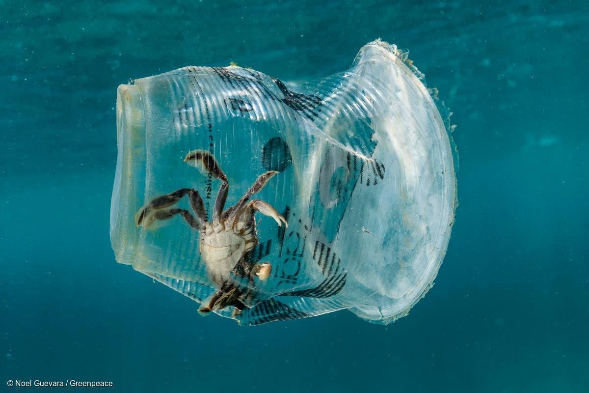 Araştırma: Avrupa'da Denizleri En Çok Kirleten Ülke Türkiye...
