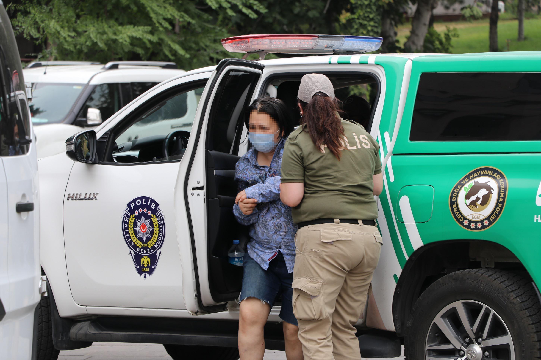 Bahçesinde 10 Ölü Köpek Bulunan Kadın Hayvana Eziyetten Tutuklandı