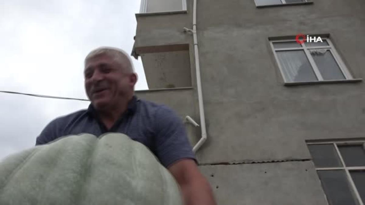 Bahçesinde 50 kiloluk bal kabağı yetiştirdi