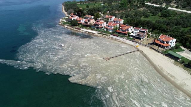 Bakan Açıkladı: Deniz Salyalarına Karşı