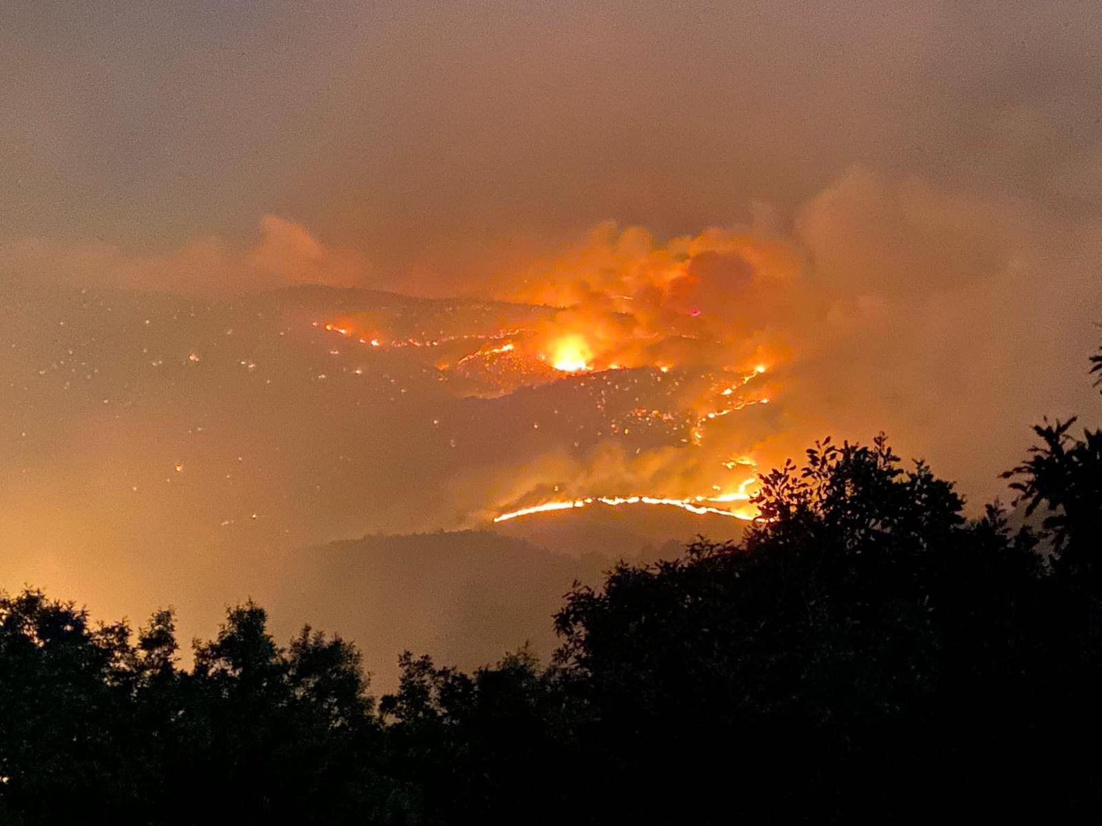 Bingöl'de 4 Gündür Devam Eden Orman Yangını Büyük Ölçüde Kontrol Altında