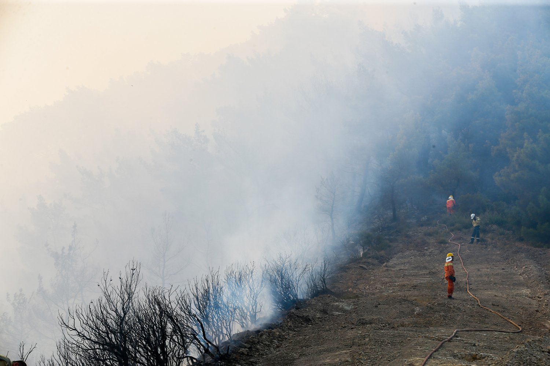 Çanakkale, İzmir, Hatay... Bugün 12 İlde Yangın Çıktı, Onlarca Hektar Orman Kül Oldu