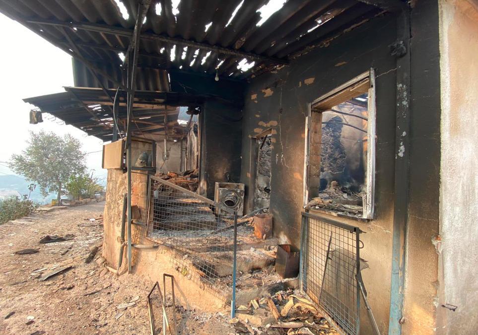 Canlı Blog: 5 İlde 12 Yangın Sürüyor