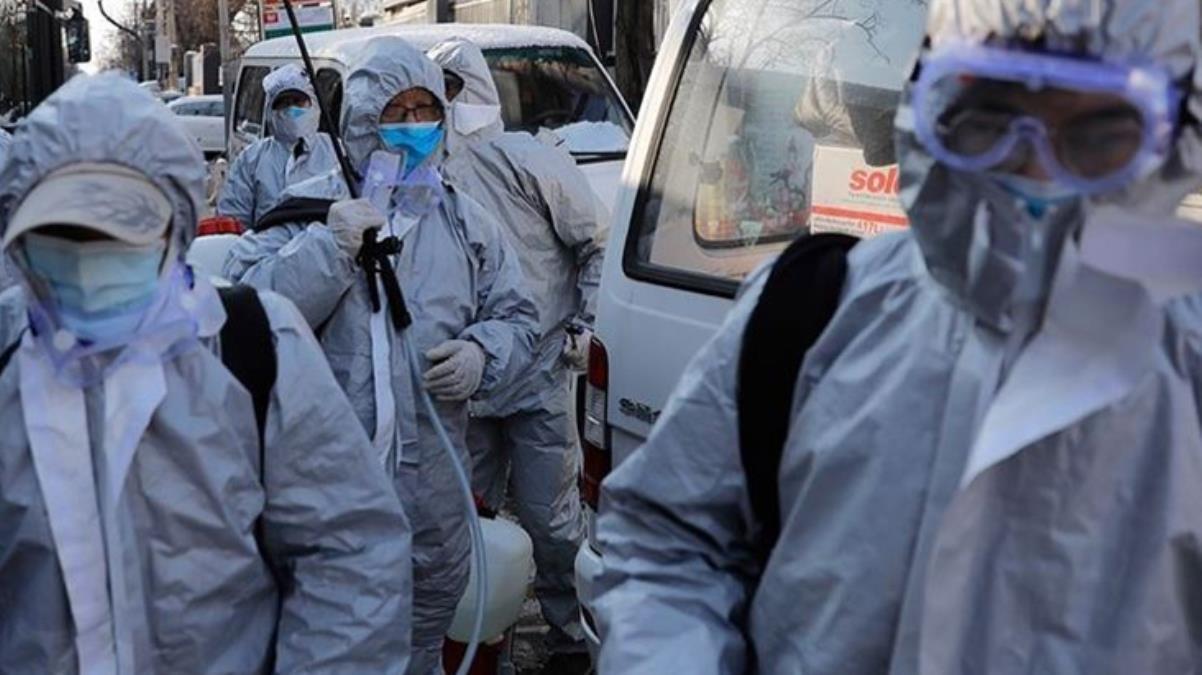 Çin'den salgınla mücadelede vahşi yöntem Koronaya yakalanan hayvanları öldürmeye başladılar