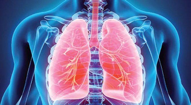 Covid-19 uzun vadede en çok hangi organı etkiliyor