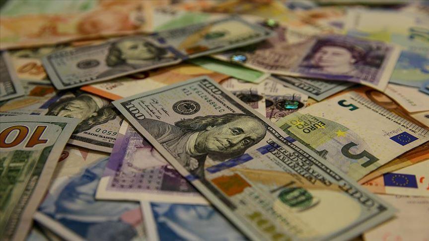 Döviz Tırmanışta: Euro 10 Lirayı Aştı