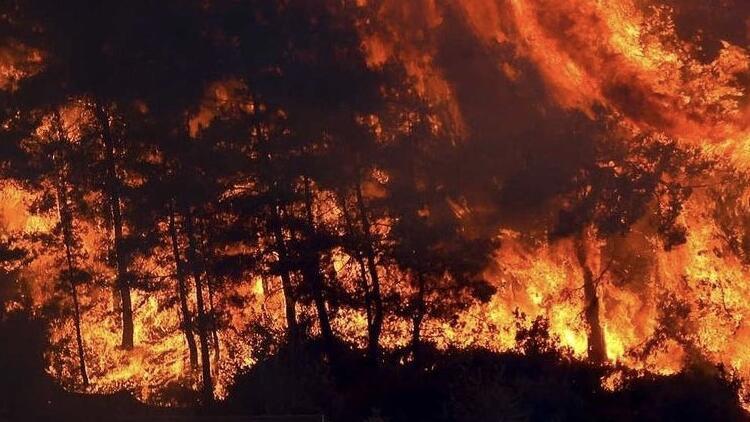 Dünya Alev Alev Yanıyor! ABD'den Sibirya'ya Tüm Dünya Yangınlarla Mücadele Ediyor