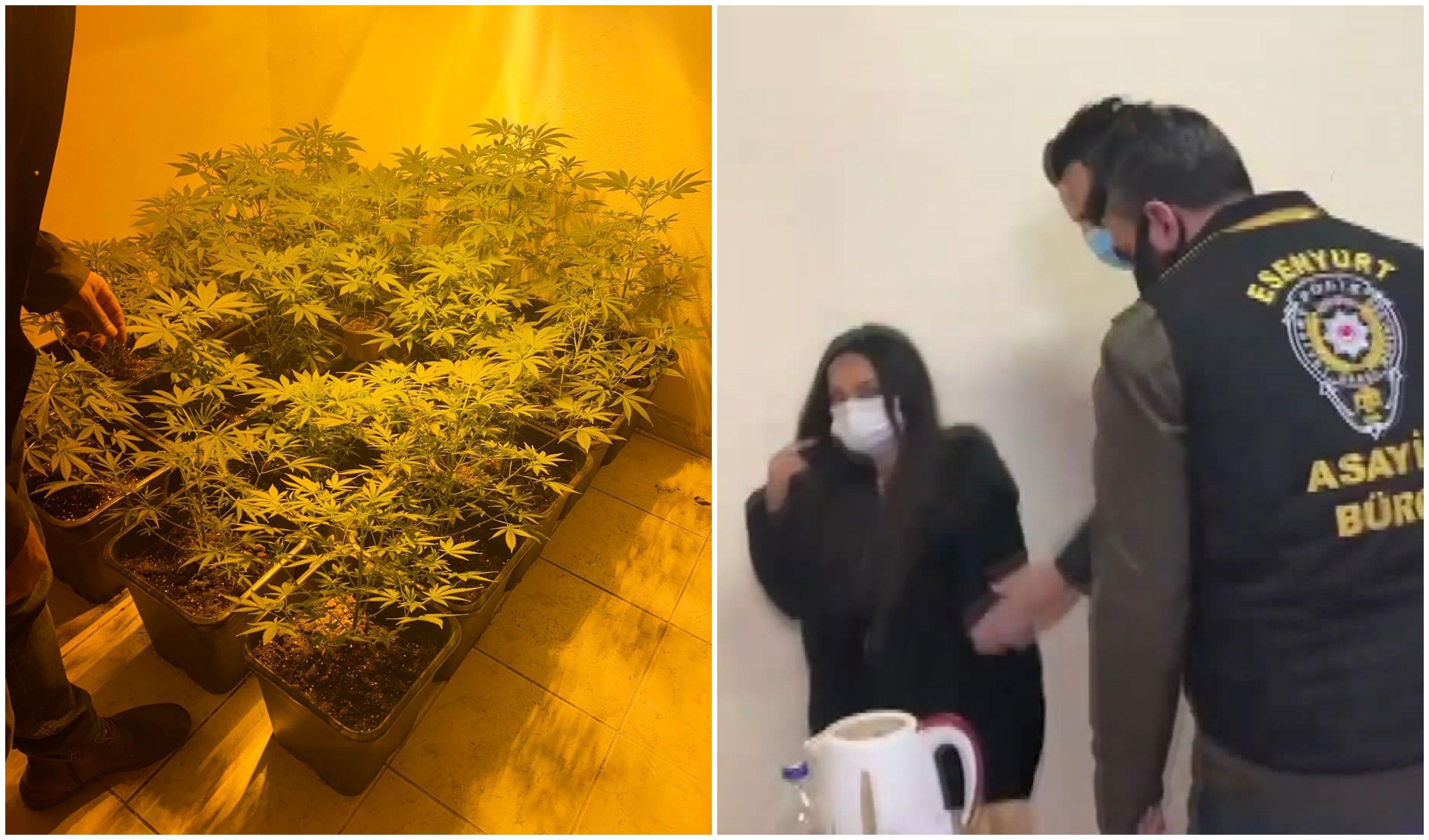 Emlak Ofisini Uyuşturucu Serasına Çeviren Kadın: 'Ne Zaman Almaya Kalksam Yakalanıyorum'