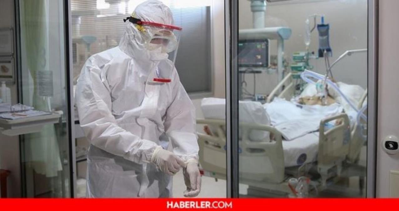 Entübe hasta iyileşir mi? Entübe hasta ne kadar sürede iyileşir? Entübe etme ne demek, entübe hasta kaç günde iyileşir?