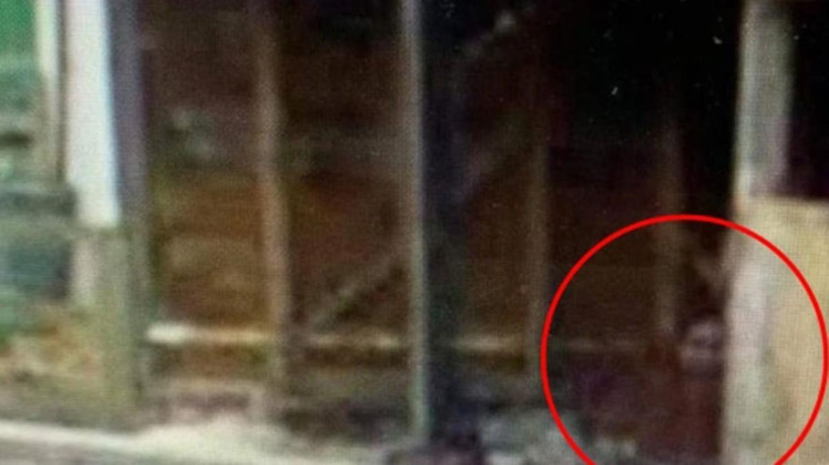 İngiltere kırmızı battaniyeli kızı konuşuyor! Esrarengiz fotoğraf yetkilileri harekete geçirdi