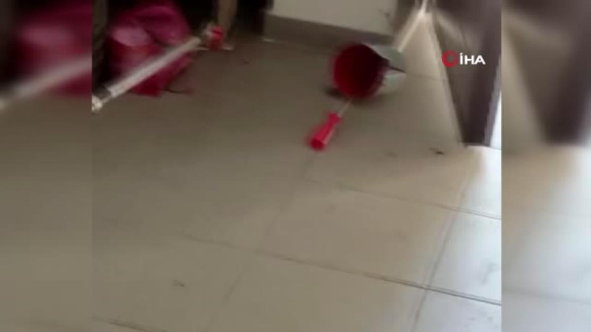 İşçilerin soyunma odasına giren yılan korkuttu