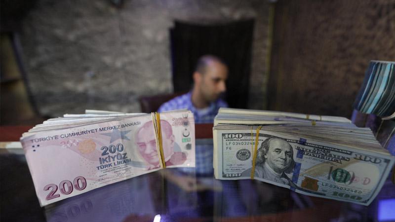 'İstesek Doları Düşürürüz' Demişti: Albayrak'ın İstifası Sonrası Dolar/TL 8.18'e Kadar Geriledi