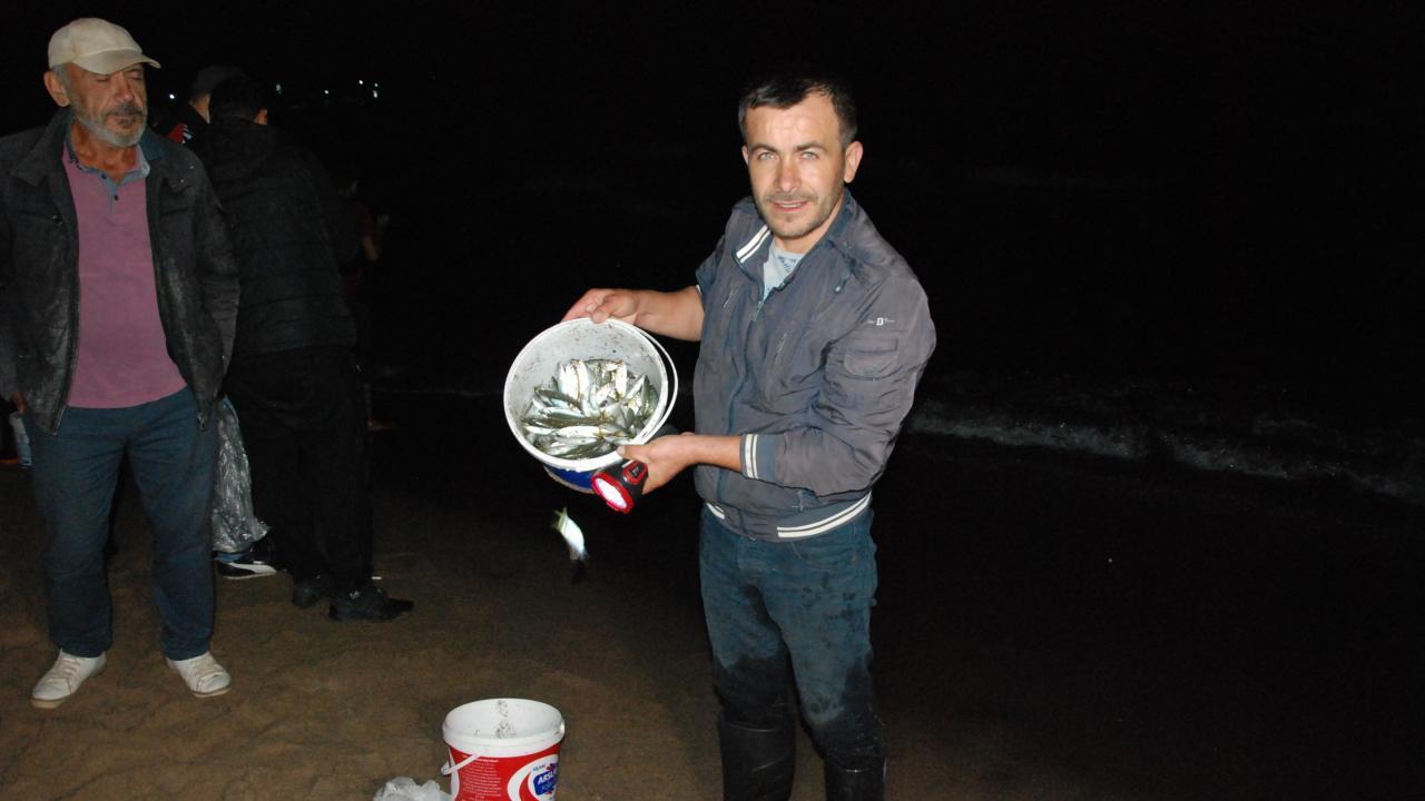 Karadeniz'de Görülmemiş Olay: Kıyıya Vuran Balıkları Elleriyle Topladılar
