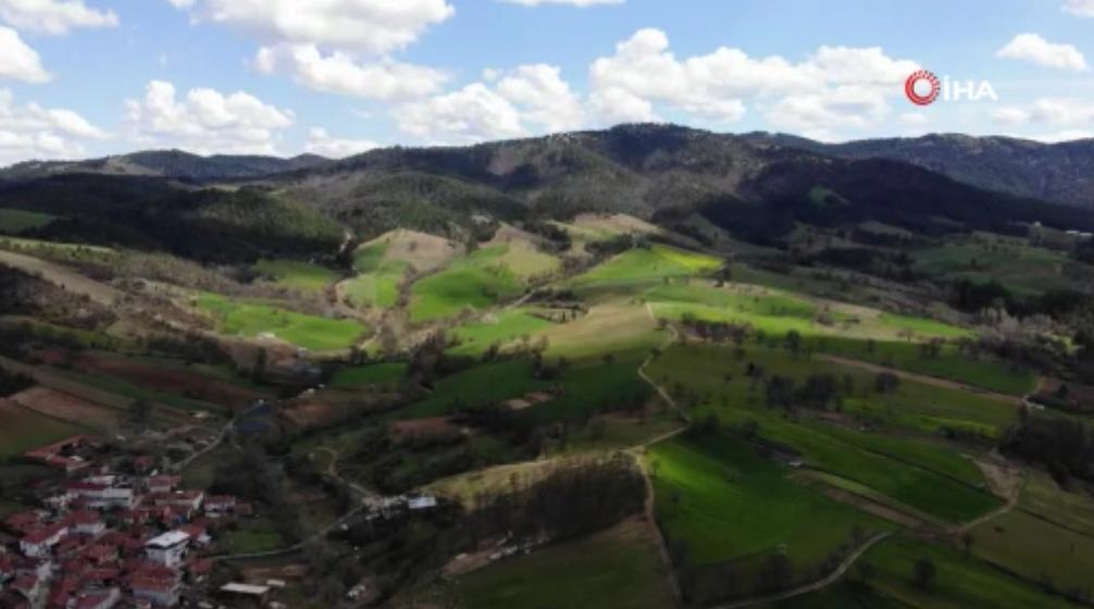 Kimse Yüzüne Bile Bakmıyordu: Altın Rezervi Bulunan Köyde Arsa Fiyatları 3 Katına Çıktı