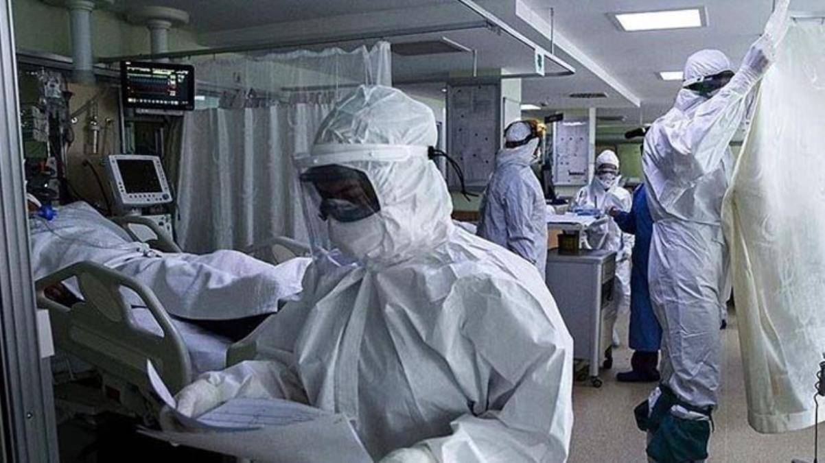 Koronavirüs tedavisinde saç biti ilacı umudu! Ölümleri azaltıyor, iyileşme sürecini kısaltıyor