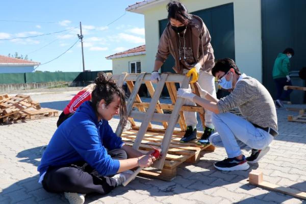 Liseli gençler, sokak hayvanlarına kışlık kulübe yaptı