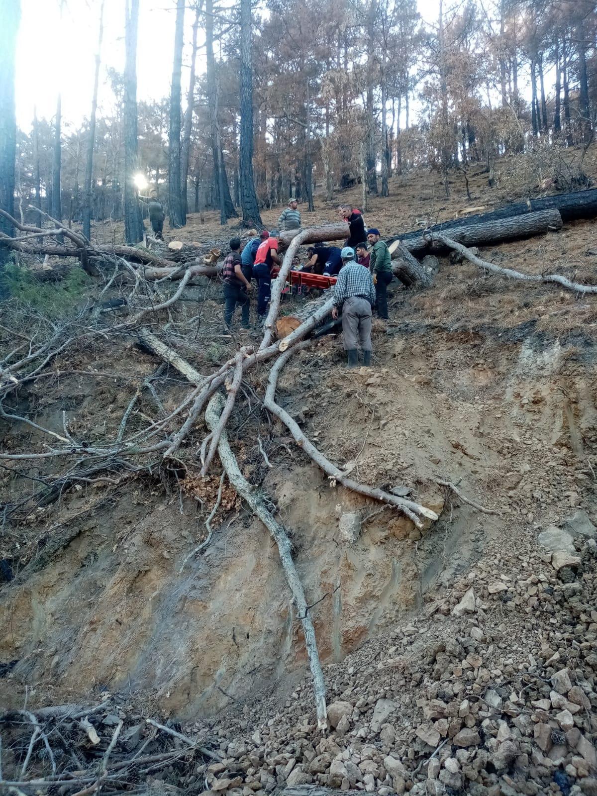 Mersin'de yaralı orman işçisi 2 kilometre sedyede taşınarak hastaneye ulaştırıldı