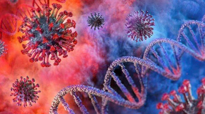 Nipah virüsü nedir, nasıl bulaşır? Belirtileri neler?