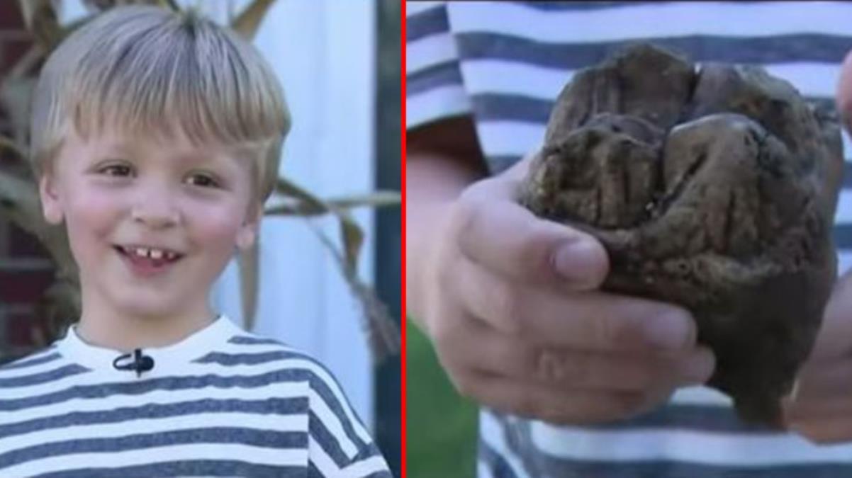 Ormanda ailesiyle birlikte yürüyüş yapan çocuğun ayağına 12 bin yıl önce yaşayan hayvanın dişi takıldı