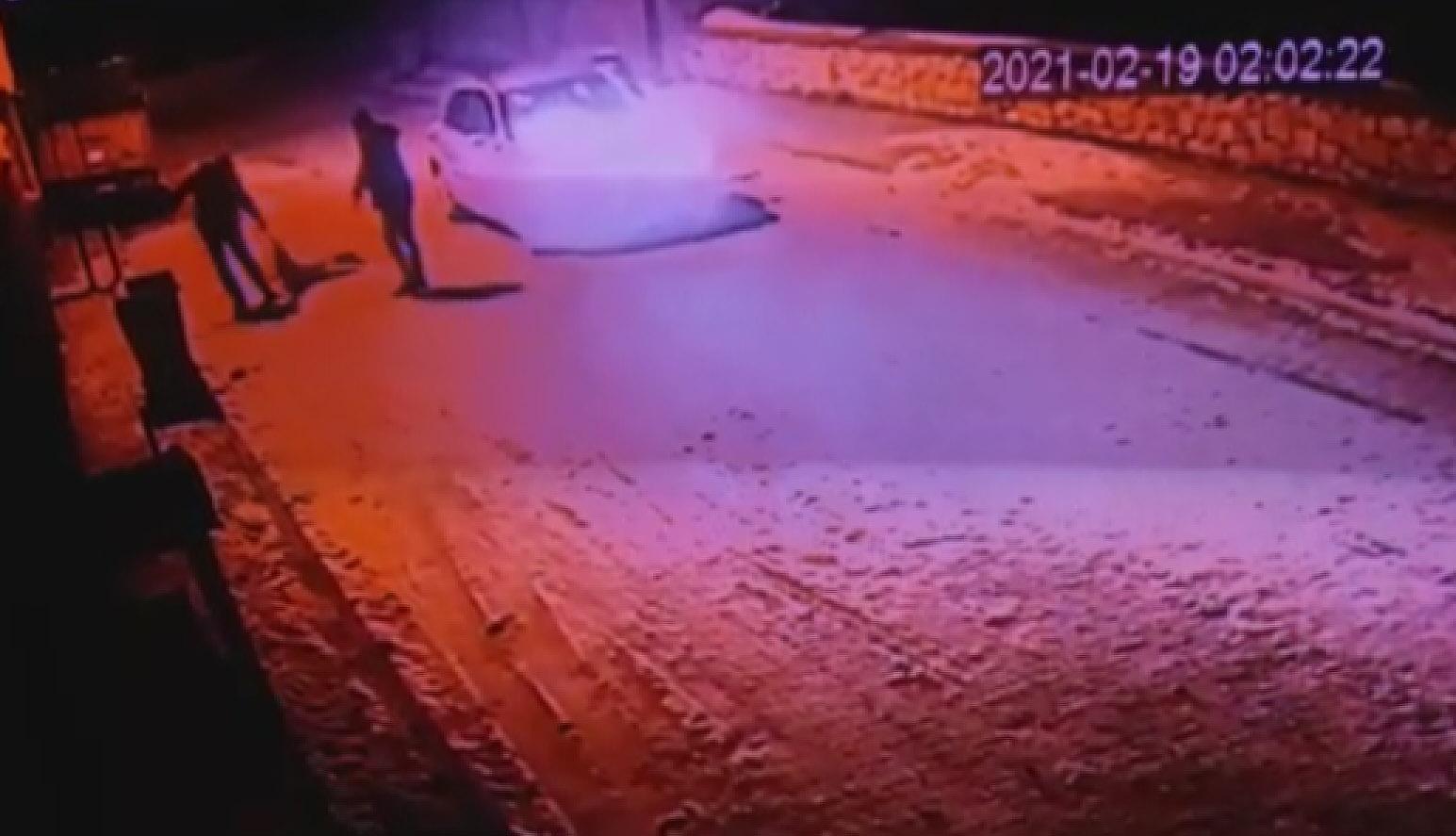 Otomobille Kovaladıkları Köpeğin Üstünden Geçip Konteynere Attılar!