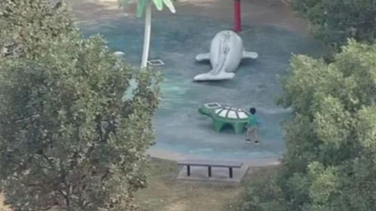 Parkta korku dolu anlar Çocuğun burnundan giren amip, beynini yedi