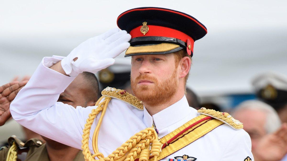 Prens Harry, askeri unvanlarını korumak istiyor