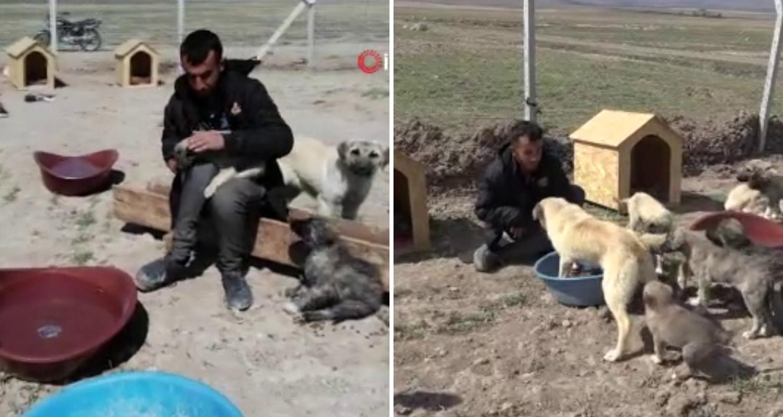Sokak Köpeklerini Beslediği İçin Köyden Kovulan Engelli Genç, 'Canlar'ı için Barınak Yaptı