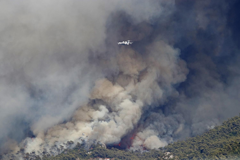 Son Dönemdeki Orman Yangınları Türkiye'nin Bir Yıllık Emisyon Başarısını Sildi