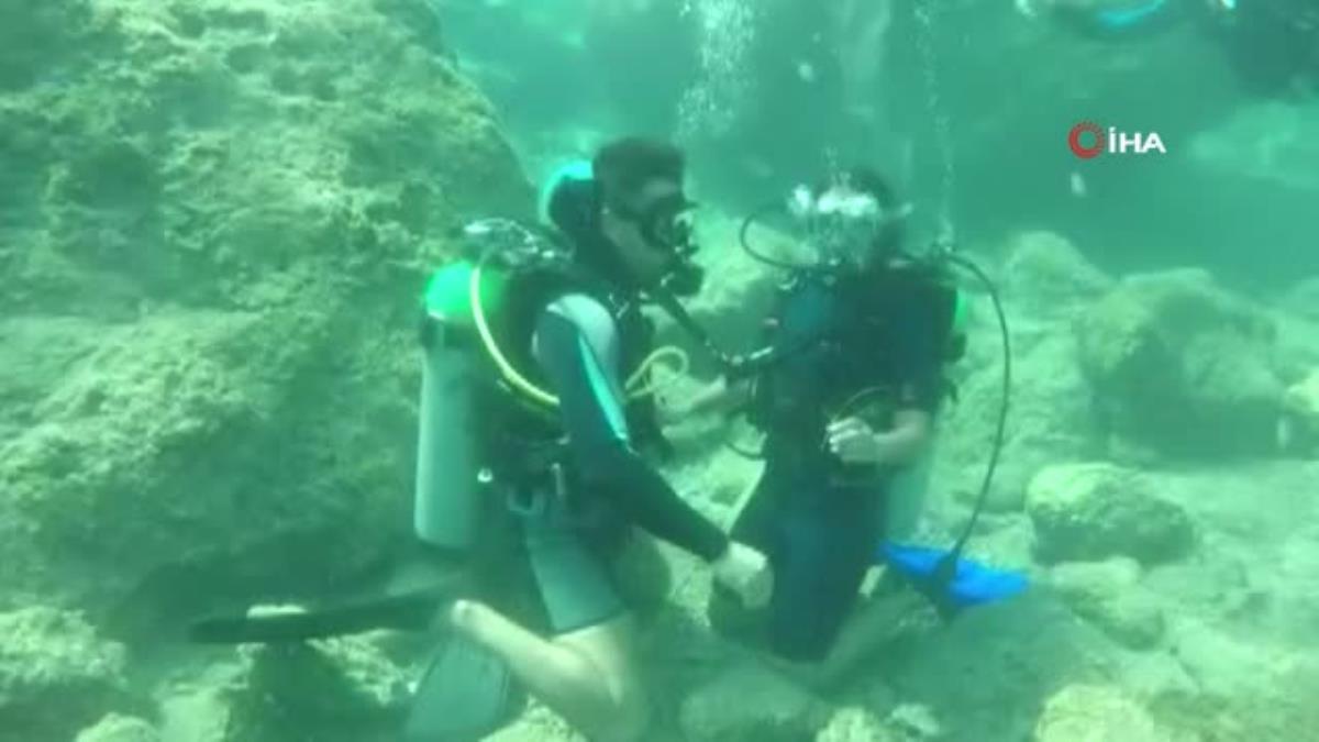 Su üstündeki yunuslardan, su altında evlenme teklifi