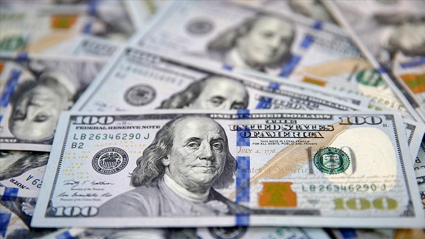 Türkiye'nin Merkez Bankası'nda Ne Kadar Döviz Var? Diğer Ülkelerde Durum Ne?