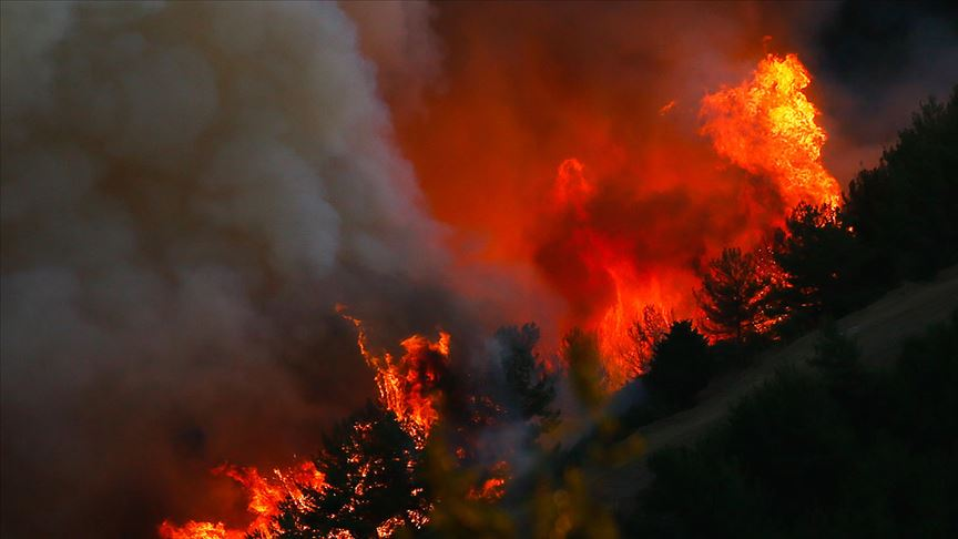 Türkiye Ormancılar Derneği: 'Nedeni Belirsiz Orman Yangınları Oranı Yüzde 47'ye Yükseldi'