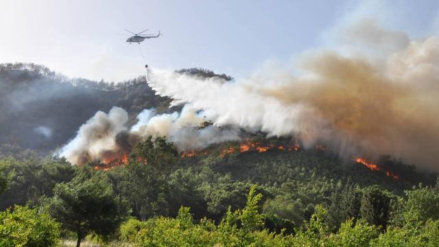 Yangın Sezonu Açıldı... Antalya'da 3 Günde 80 Dekar Orman Kül Oldu