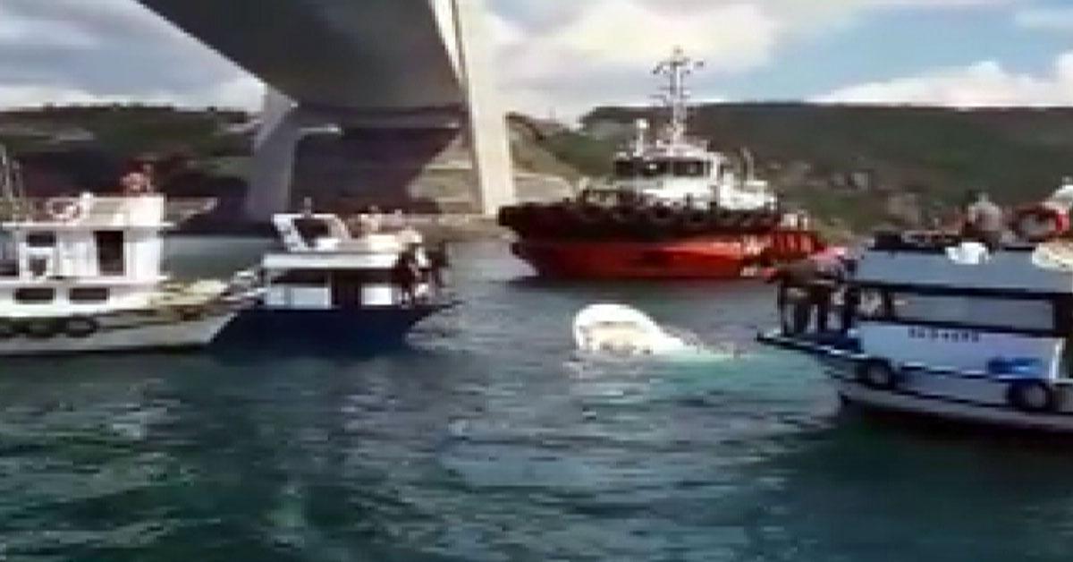 Yavuz Sultan Selim Köprüsü Altında Balıkçı Teknesine Gemi Çarptı