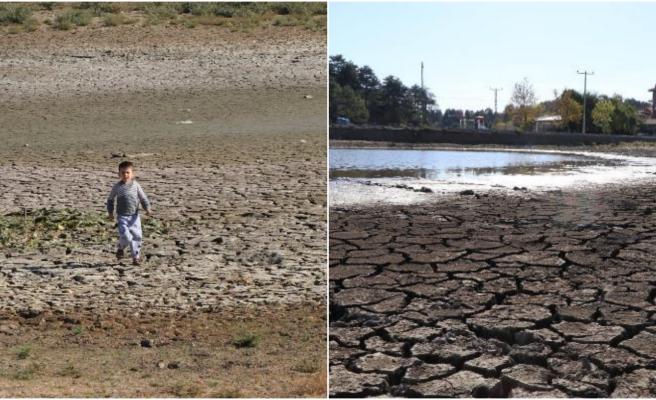 150'den Fazla Kuş Türüne Ev Sahipliği Yapıyordu: Yayla Gölü Yok Olmak Üzere