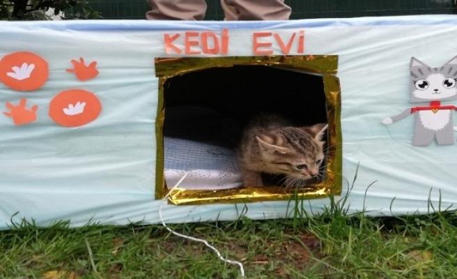 Bayrampaşa'da kedilerin de bir 'yuvası' oldu