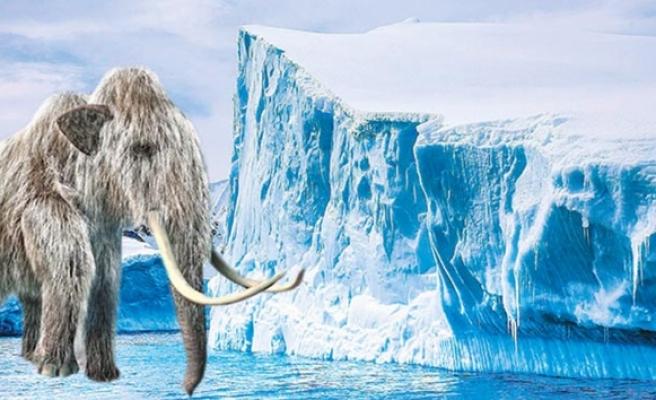 466 milyon yıllık gizem çözüldü!