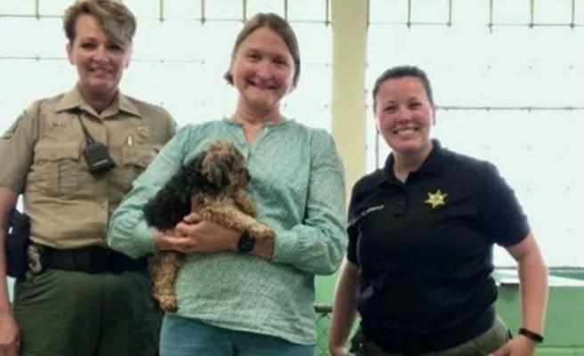 7 yıl önce kaybolan köpek, 28 Haziran'da evinden yüzlerce kilometre uzaklıkta bulundu