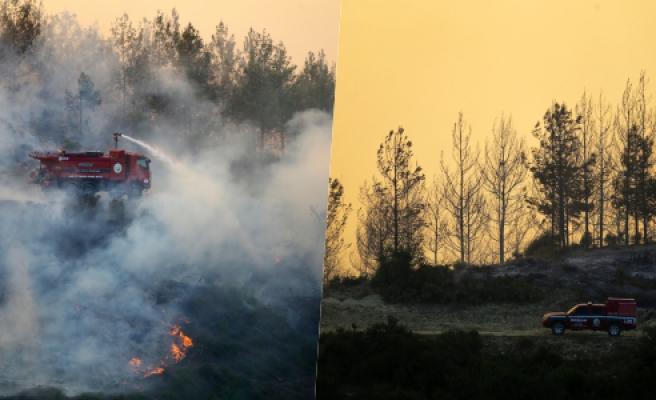Adana'daki Orman Yangınına Müdahale Sürüyor: 200 Hektardan Fazla Alan Kül Oldu, 6 Köy ve 800 Hane Boşaltıldı