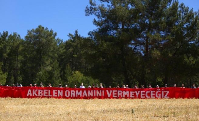 Akbelen Ormanları'nda Çevreciler Kazandı: Mahkemeden Yürütmeyi Durdurma Kararı
