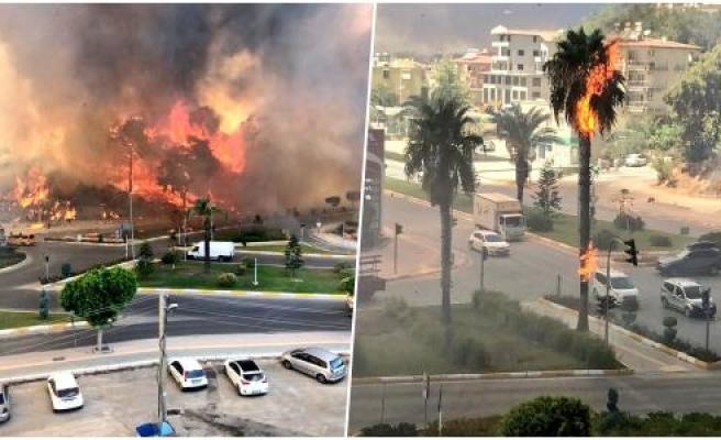 Antalya Manavgat'ta Orman Yangını: Seralar Yandı, Mezarlıklar Zarar Gördü...