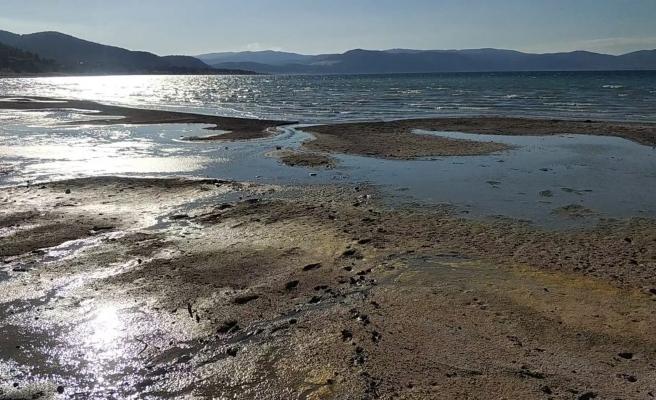 Bakanlık, Salda Gölü'ndeki Değişim İçin 'Polen ve Ağaç Birikintisi' Dedi